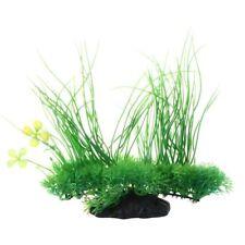 Planta plástica