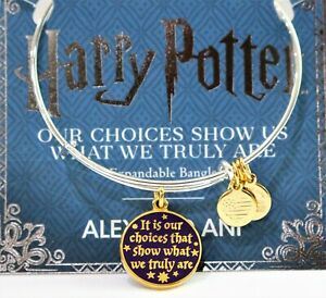 """Alex and Ani Harry Potter Bracelet """"It is Our Choices"""" Double Sided Charm Bangle"""