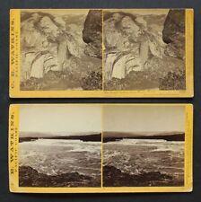 C. E. WATKINS PACIFIC COAST STEREOVIEW Lot (2)  Yosemite 1860's  Columbia River
