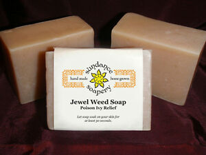 Homemade Soap ~ Jewel Weed  ~ Handmade Soap ~ Great For Poison Ivy & Oak & Sumac