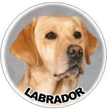 2 Labrador Retriever Car Stickers No 3 Plain -Starprint - Auto combined postage