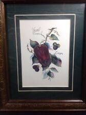 Apples Framed Art Print by B. Sumrall, hand signed