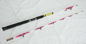 Nite Stick Catfish Spinning Rod 9' 2PC Glow Tip Pink