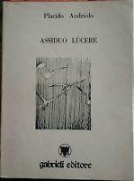 Assiduo Lùcere - Placido Andriolo, 1989,  Gabrieli Editore