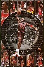 SEALED JORDAN Chicago Bulls Eighth Wonder 1997 Costacos Bros Poster 6123 NEW