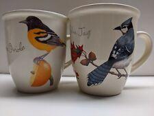 Lot 2 collectable Cj Wildlife 12 0z Mug Cup Bird Euc Baltimore oriole & blue Jay