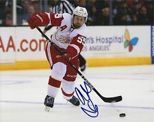 NIKLAS KRONWALL SIGNED DETROIT RED WINGS 8X10 PHOTO AUTOGRAPH