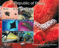 Palau 2013 MNH Marine Life Mandarin Fish 6v M/S IV Turtles Sponges Fishes Stamps