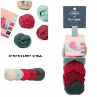 NEW Caron X Pantone Merino Wool Yarn Strawberry Chill RETIRED SOLD OUT LIMITED