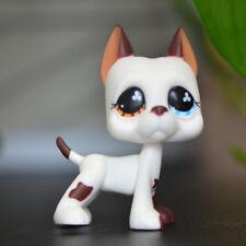 Littlest Pet Shop LPS Toys #577 Brown Blue Eye Great Dane Dog Rare No magnet