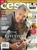 Cesar's Way Dog Magazine The Gift Of Giving Training Puppy Secrets Day Care 2011