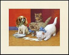 CAVALIER KING CHARLES SPANIEL PUPPY AND KITTENS DOG CAT PRINT READY TO FRAME