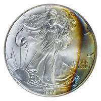 1995 $1 Silver Eagle PCGS MS66 ( Beautifully Toned ) ASE Coin Bullion