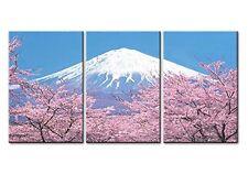 Peak Of Mount Fuji With Sakura Canvas Print Wall Art Painting Picture Photo Gift