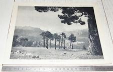 PHOTO ECOLE 1954 GEOGRAPHIE ASIE CHAINE DE MONTAGNES DU TAURUS TURQUIE TÜRKIYE