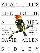 What It's Like to Be a Bird: From Flying to Nesting, Eating to (Digital 2020)