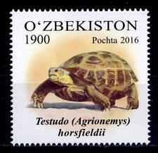 Schildkröten. Vierzehenschildkröte. 1W. Usbekistan 2016