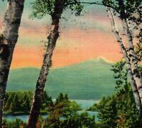 Lake Chocorua & Mountain White Mts NH Vintage Postcard
