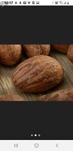 Bitter Kola - West African Fresh Organic Biter Kola Nut (Garcinia Kola) 1/2 lb