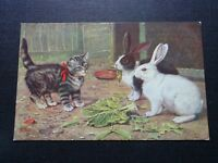 Cpsm Kaninchen Und Katze