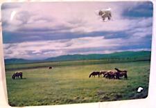Magnetic Memo Board Horses in Pasture