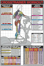 ELLIPTICAL CROSS-TRAINER Professional Cardio Fitness Gym Wall Chart POSTER