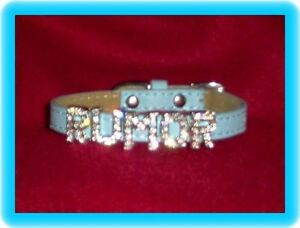 Sm Dog Collar Blue Leather Custom Rhinestone Letters  Poodle Yorkie Shih tzu