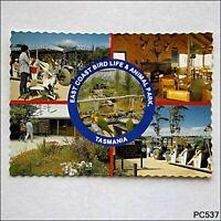 East Coast Bird Life & Animal Park Tasmania 5 Views Postcard (P537)
