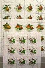 RUSSIA RUSSLAND 2003 Klb 1113-17 MS 6790-94 Fruits Früchte Flora Food MNH