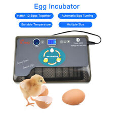 Automatic 12 Egg Incubator Temperature Control Birds Chicken Turning Hatcher 1pc