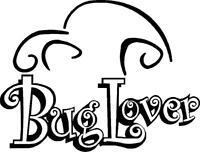 Buglover VW vinyl decal sticker VW t4 t5 camper golf polo euro passat beetle