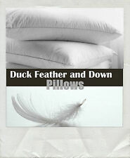 Pair Of Luxurious Duck Feathers & Down Filled Pillows