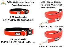 Collari rosso standard in nylon per cani