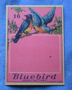 8285 Antique Bluebird button card, beautiful birds graphic, no buttons/blank