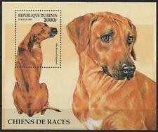 Benin Stamp - Dogs Stamp - NH