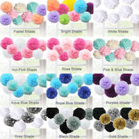 Mixed Tissue Paper Flower Pompom Pom Poms Hanging Garland Wedding Party Decor