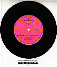 ROD STEWART What's Made Milwaukee Famous (Has Made A Loser Out Of Me) 45 RARE