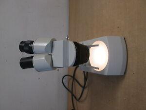 Stereo Mikroskop Euromex-Arnhem Mod. KTD-2