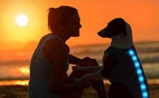 Small Blue Waterproof Rechargeable LED Dog Coat Hi Vis Reflective Vest Safety