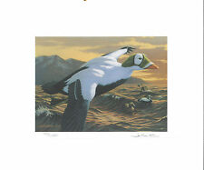 RW59 1992 FEDERAL DUCK STAMP PRINT SPECTACLED EIDER by Joe Hautman