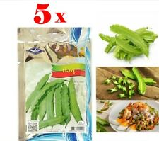 5 x25 Seeds/Pack Winged Bean Thai Vegetable Garden Easy Planting Free Ship+Track