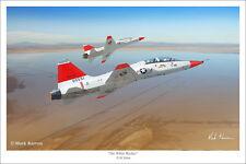 "T-38 Talon Aviation Art Print by Mark Karvon, Size 16"" x 24"""