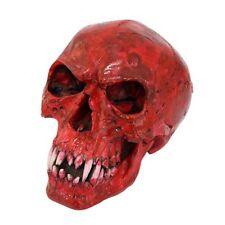 Red Vampire Skull 061PT04