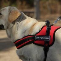 "Adjustable Dog Harness Walking Service Vest Handle Padded SportsDog Walk 25""-30"""