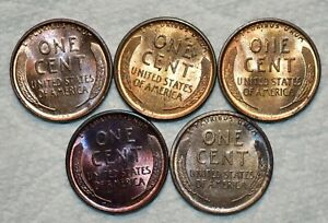 5x Brilliant Uncirculated 1909-P VDB Lincoln Cents, Red-Brown Specimens.