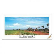 Habanos / El Habano Cigar Poster Sun-Grown Tobacco Fields, Pinar del Rio, Cuba.