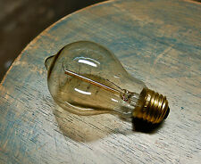 Edison Globe Light Bulb, 60watt Antique Spiral Filament Vintage Reproduction A19