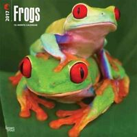 CAL 17 FROGS by WALL 9781465081681 (Calendar, 2016)