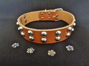 REAL LEATHER brown stud dog collar, large boy male black medium rivet STRONG