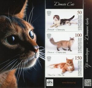 Kyrgyzstan KEP 2019 MNH Domestic Cats Scottish Fold Maine Coon 3v M/S Stamps